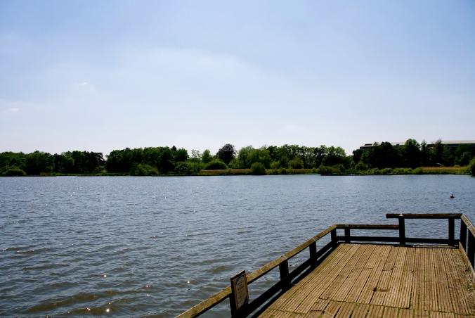 Fleet Pond landing