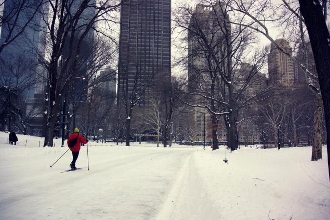 Central Park Skier