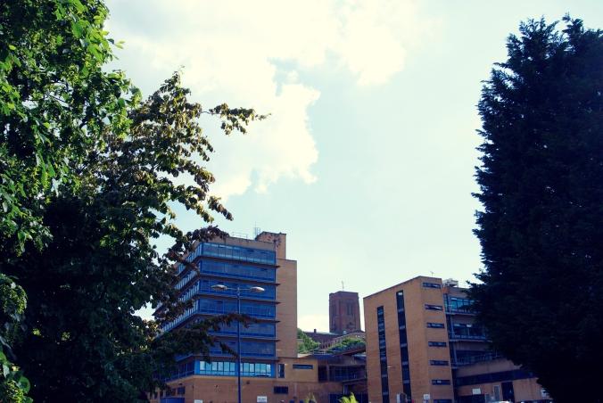 Surrey1