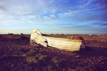 Dungeness_6