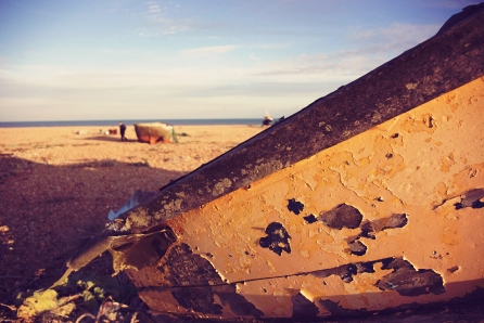 Dungeness_8